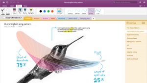 Microsoft Brings Its OneNote Importer Tool to Mac