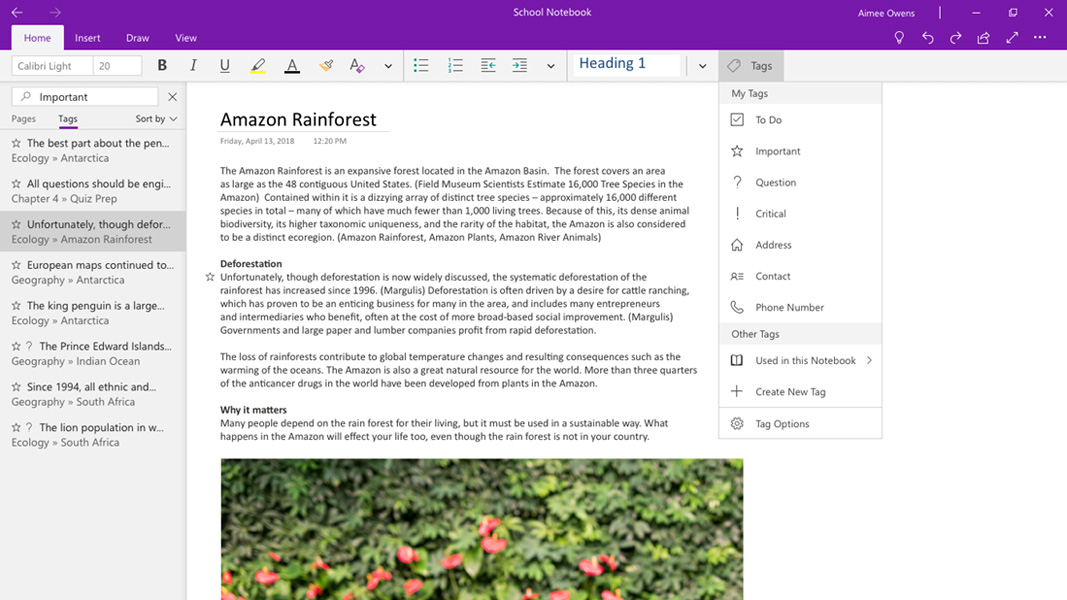 Microsoft Demotes OneNote 2016, Moves Forward with Modern
